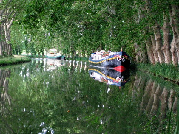 The Anjodi moored under the beautiful canopy of sycamore trees along the Canal du Midi