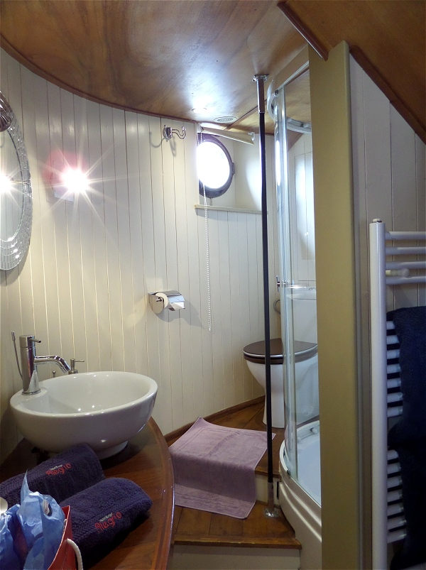 The ensuite bathroom for the Rive Gauche cabin aboard the Alegria
