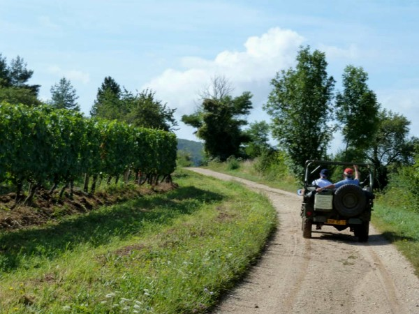 WWII jeeps are a fun way to tour the vineyards of Clos de Vougeot