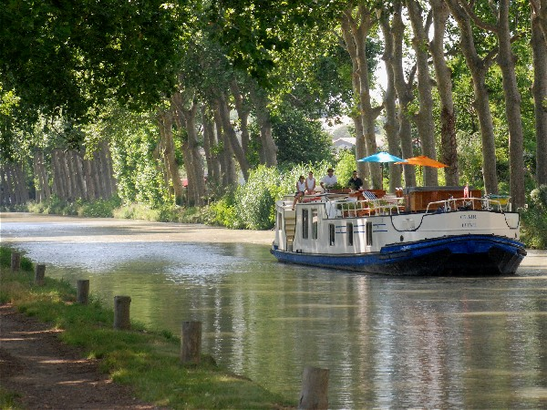 The Clair de Lune cruising under a canopy of sycamore trees along the Canal du Midi
