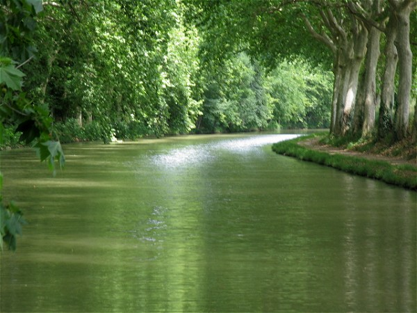 Explore the magnificent and historic Canal du Midi on board the Emma