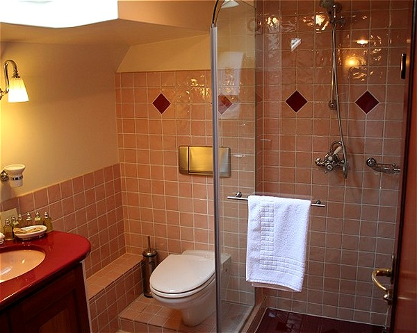 All of the cabins aboard the Roi Soleil have their own ensuite bathroom with a shower