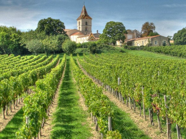 One of the many lovely chateaux and vineyards that dot the alluring countryside